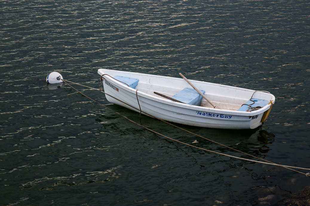 Memories... I grew up rowing around Little Bay in New Hampshire in a boat like this.